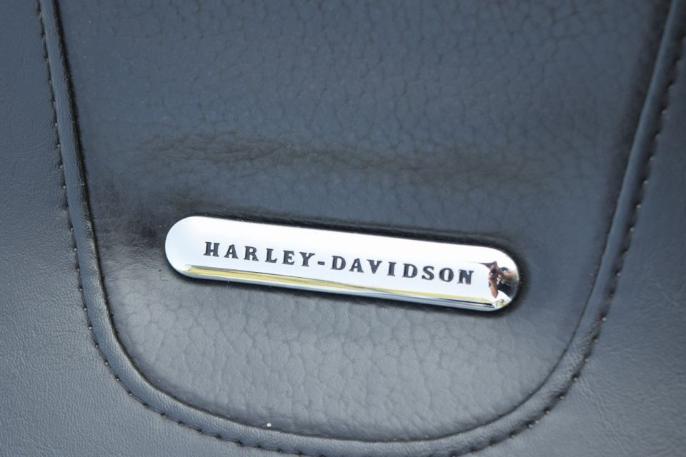 12009 HARLEY DAVIDSON SOFTTAIL